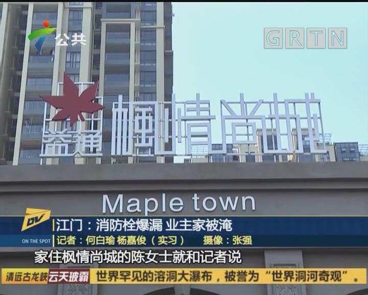 江门:消防栓爆漏 业主家被淹