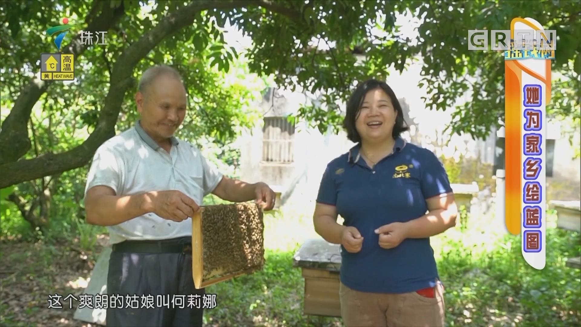[HD][2019-08-05]摇钱树:她为家乡绘蓝图