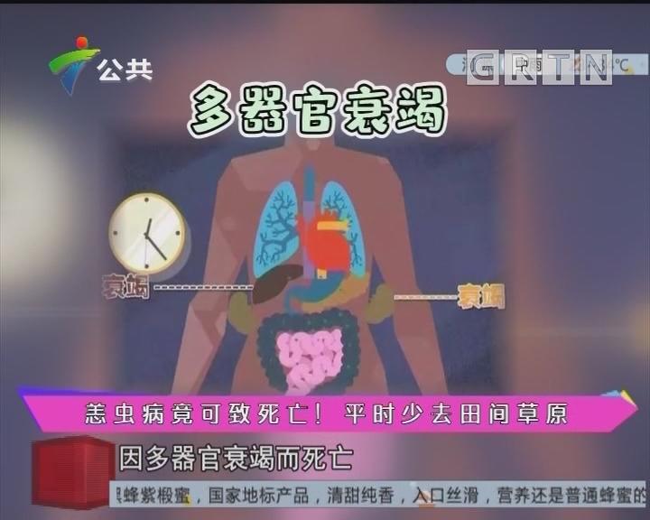 健康有料:恙虫病竟可致死亡!平时少去田间草原