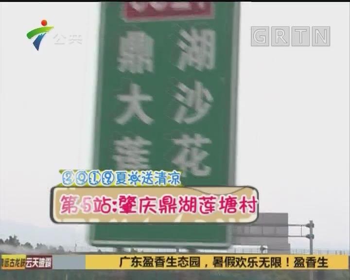 2019夏日送清凉 第5站:肇庆鼎湖莲塘村