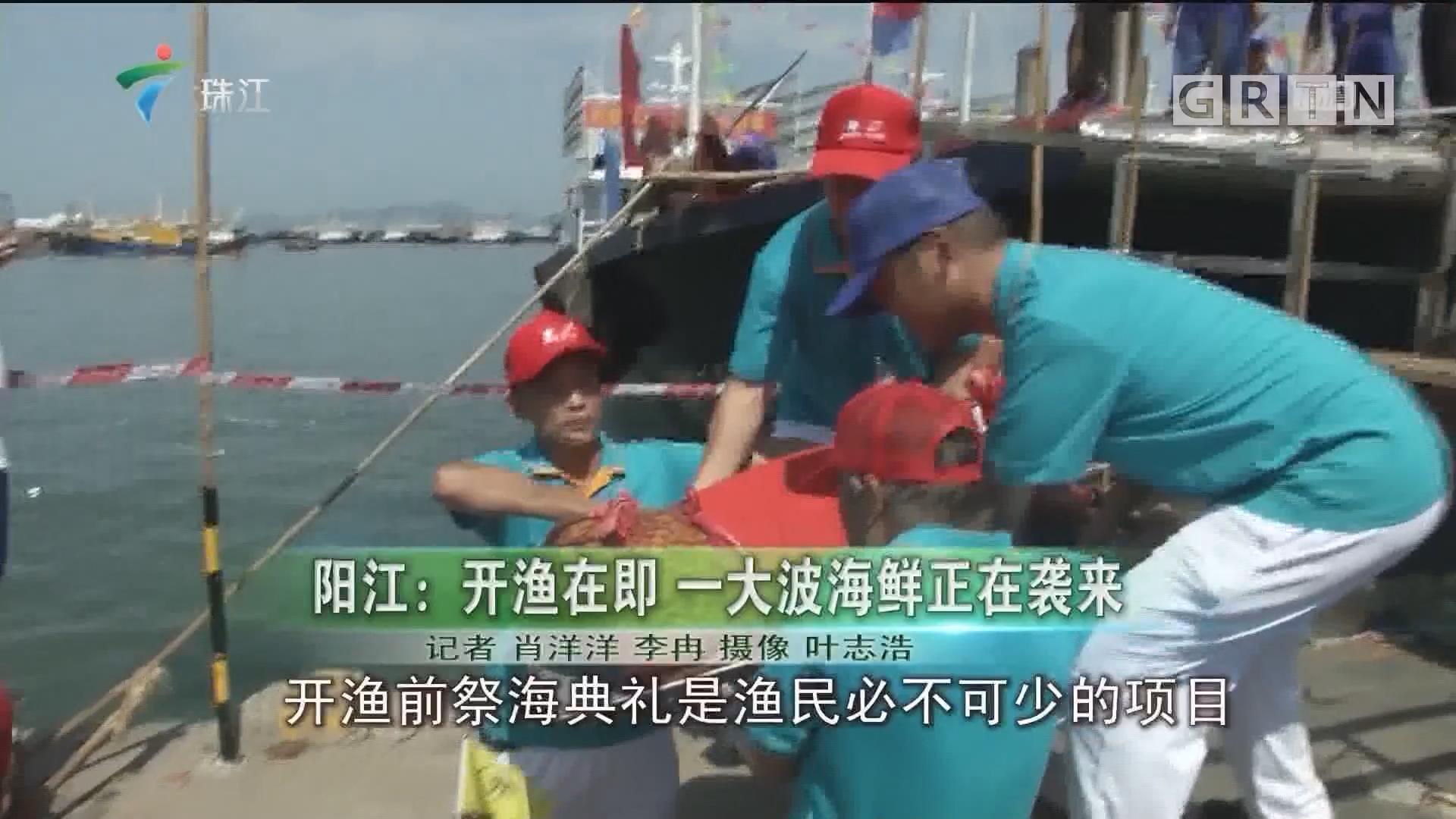 阳江:开渔在即 一大波海鲜正在袭来