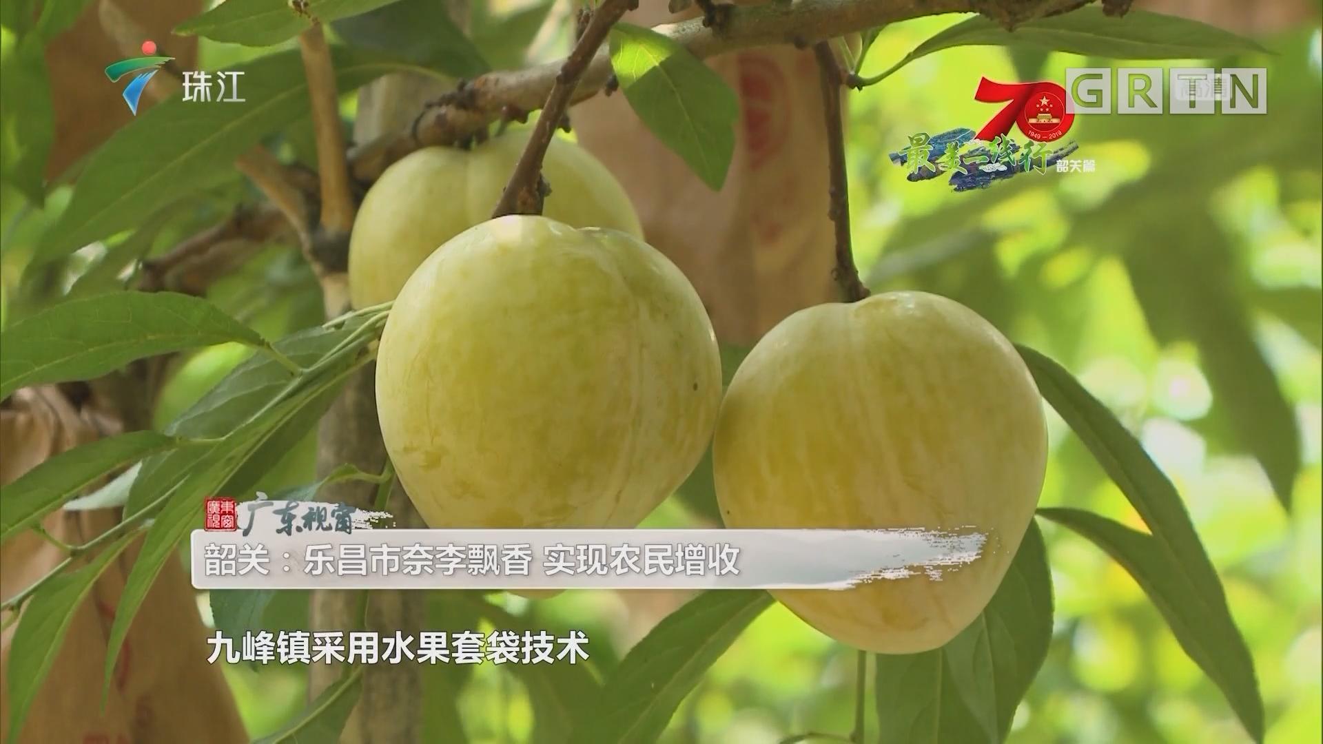 [HD][2019-08-10]广东视窗:韶关·乐昌市奈李飘香 实现农民zs