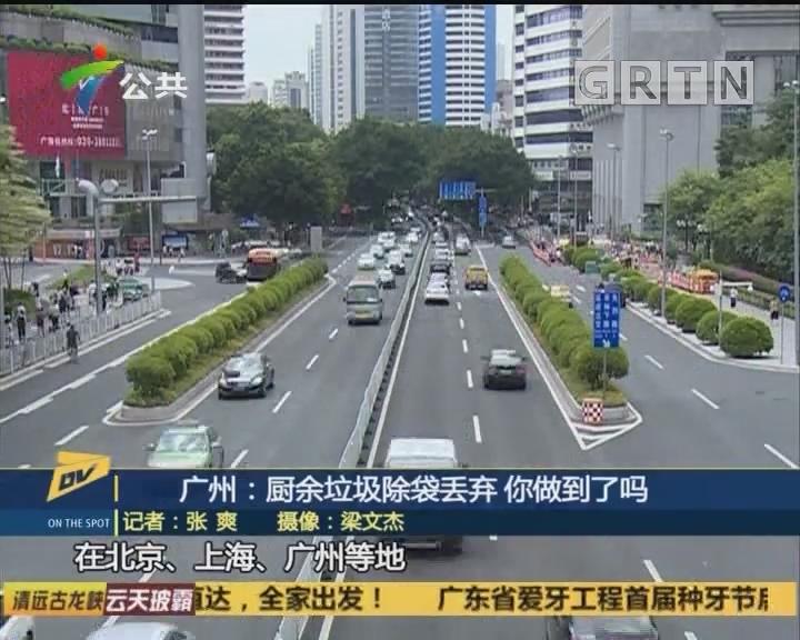 广州:厨余垃圾除袋丢弃 你做到了吗