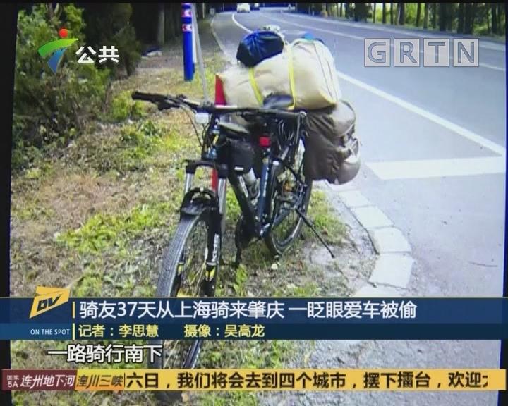 骑友37天从上海骑来肇庆 一眨眼爱车被偷
