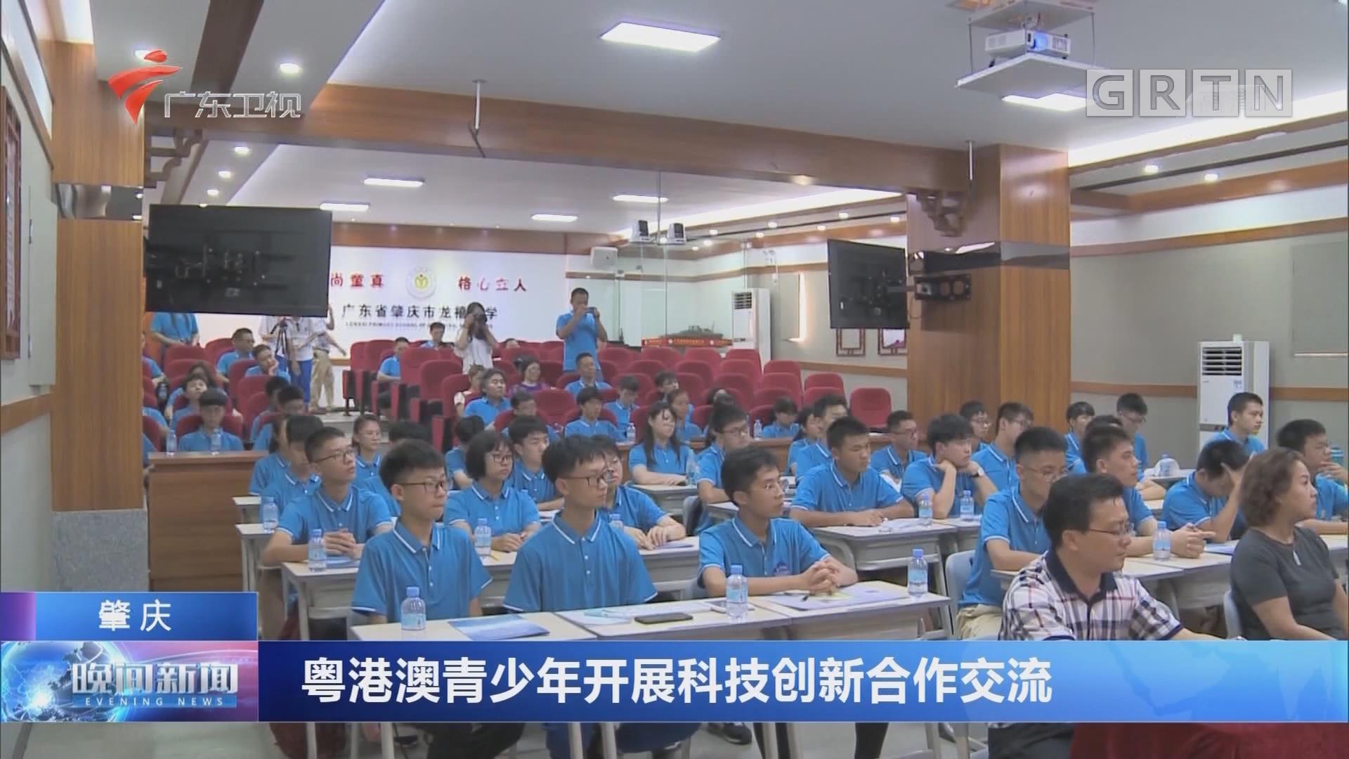 肇庆:粤港澳青少年开展科技创新合作交流
