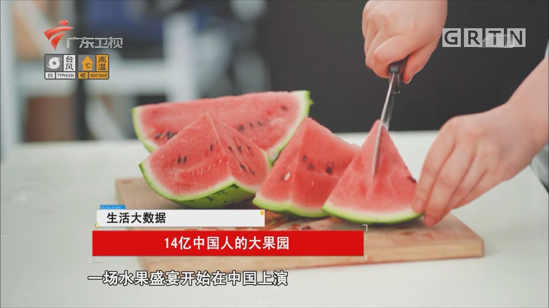 14亿中国人的大果园