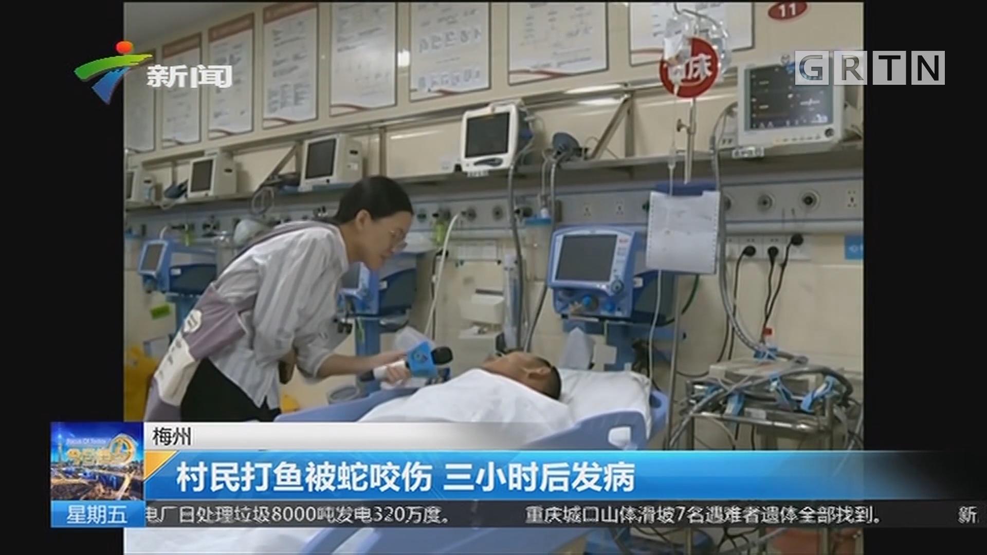 梅州:村民打鱼被蛇咬伤 三小时后发病