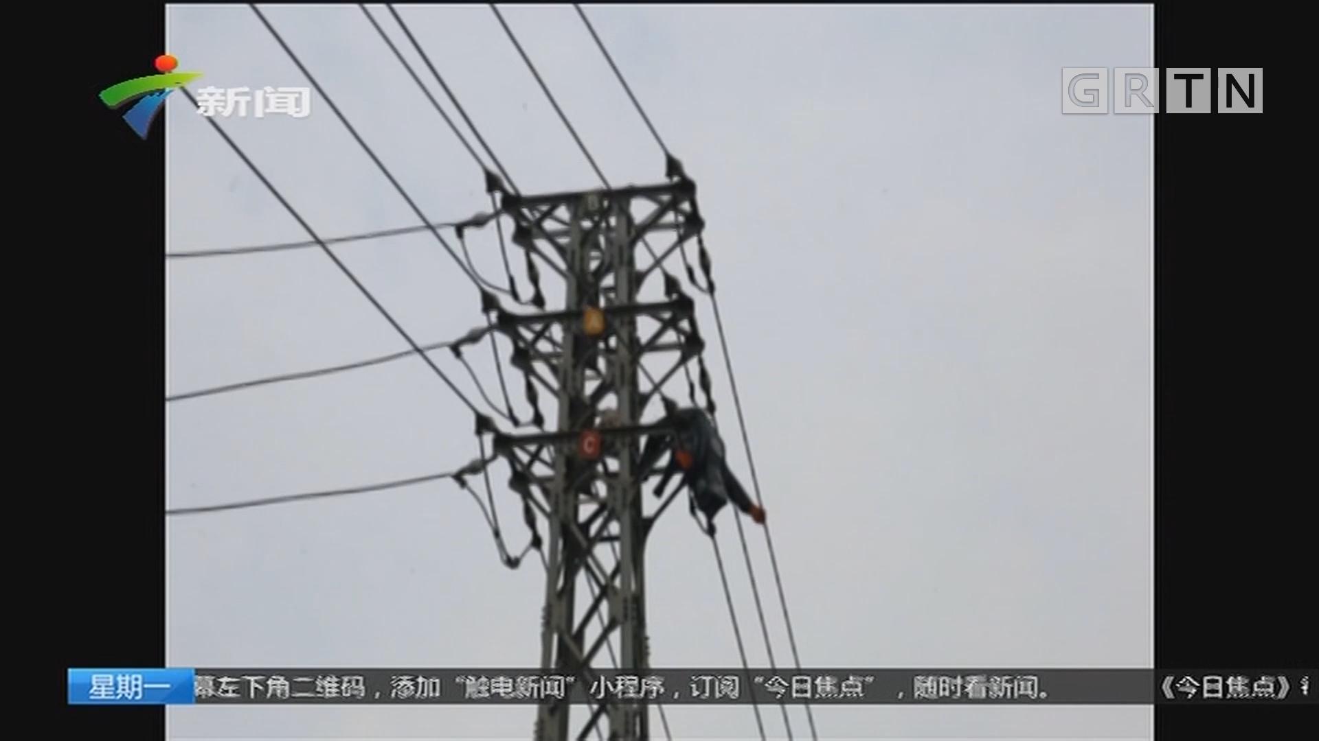 广西南宁:男子上高压电塔摘蜂窝被电流击穿