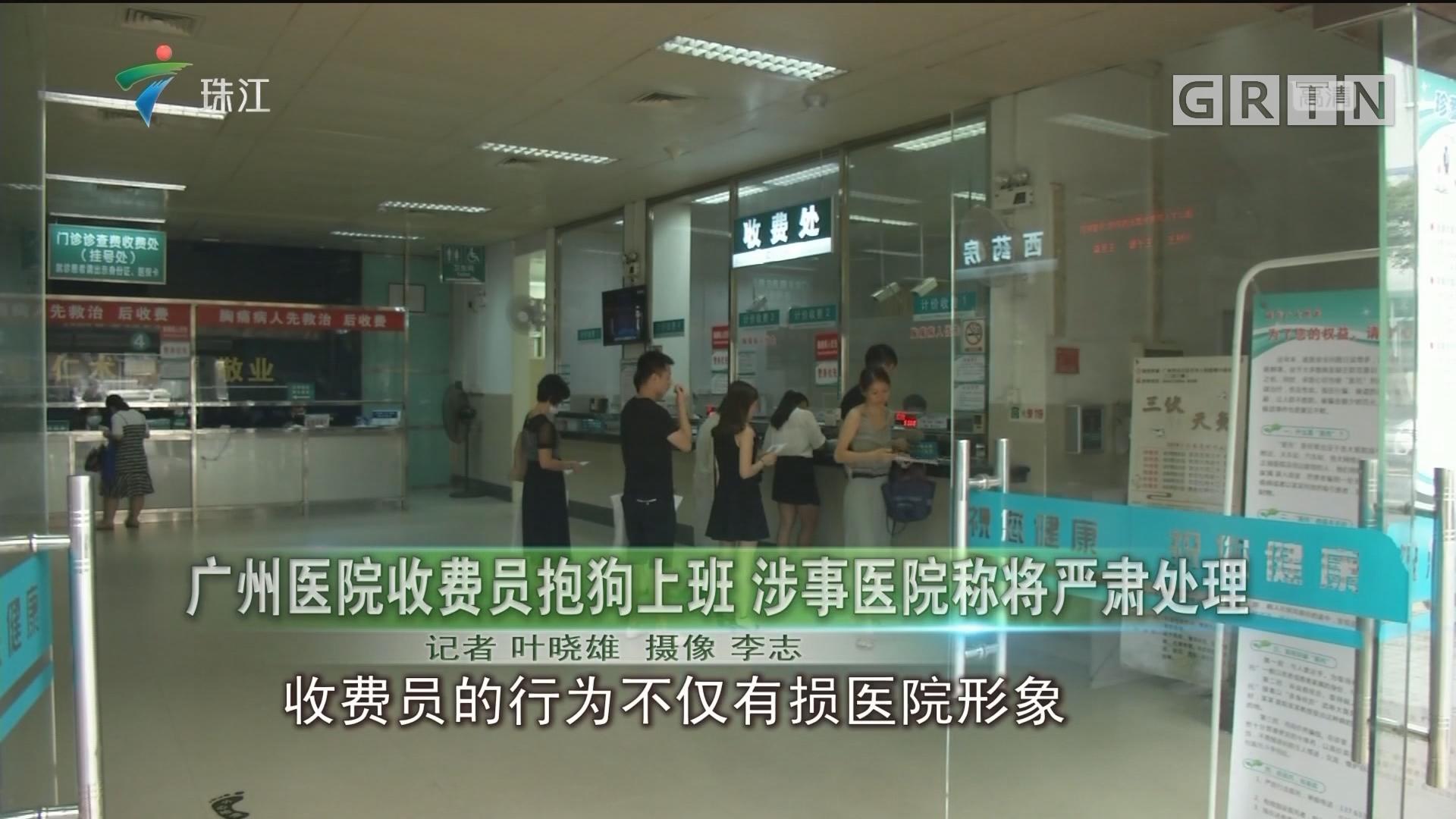 广州医院收费员抱狗上班 涉事医院称将严肃处理