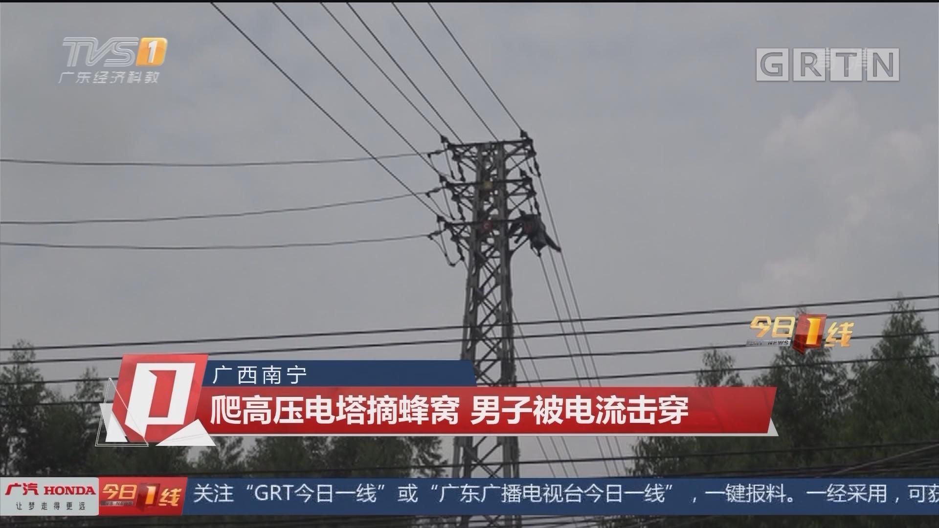 广西南宁 爬高压电塔摘蜂窝 男子被电流击穿