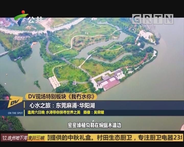 DV现场特别板块《我冇水你》 心水之旅:东莞麻涌·华阳湖