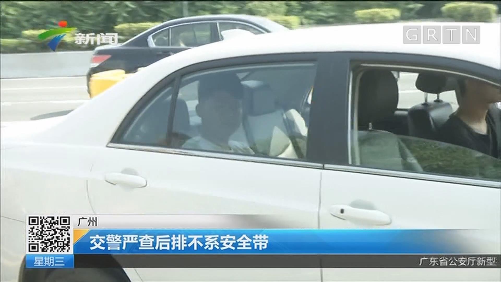 广州:交警严查后排不系安全带
