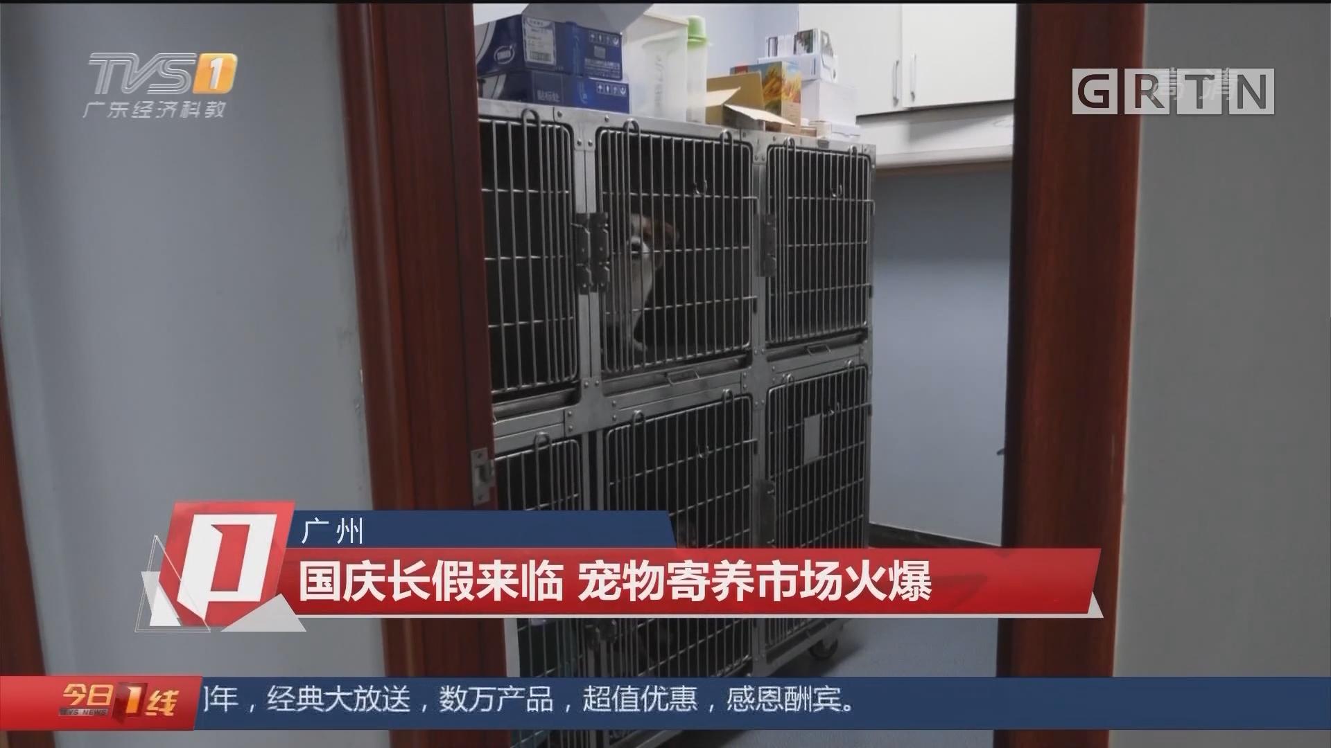 广州:国庆长假来临 宠物寄养市场火爆