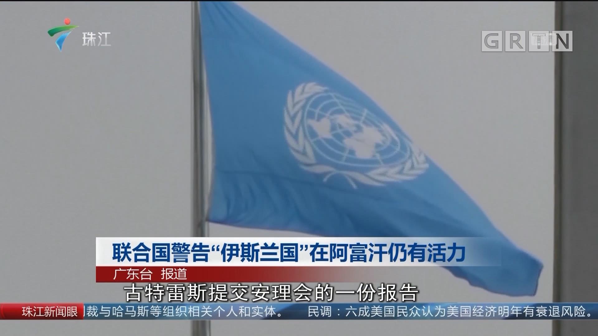 """联合国警告""""伊斯兰国""""在阿富汗仍有活力"""