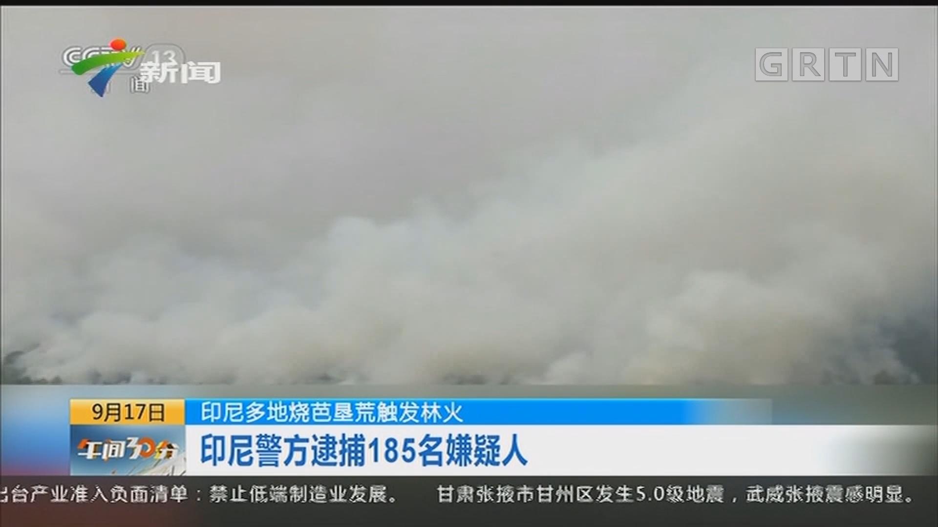 印尼多地烧芭垦荒触发林火:印尼警方逮捕185名嫌疑人