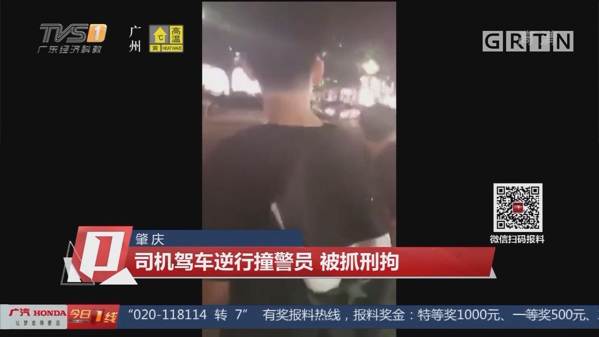 肇庆:司机驾车逆行撞警员 被抓刑拘