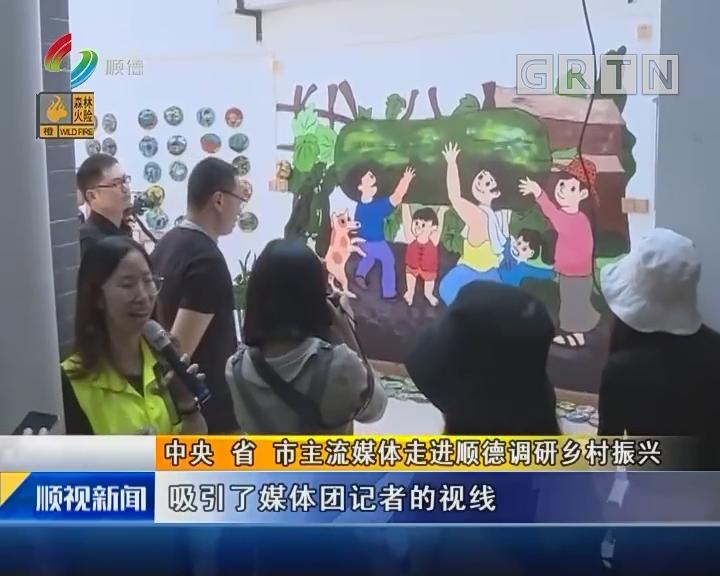 中央 省 市主流媒體走進順德調研鄉村振興
