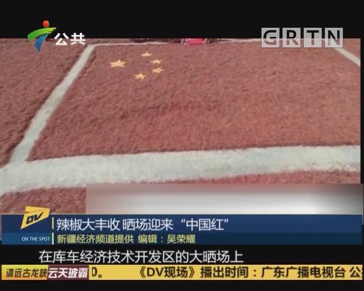 """(DV现场)辣椒大丰收 晒场迎来""""中国红"""""""