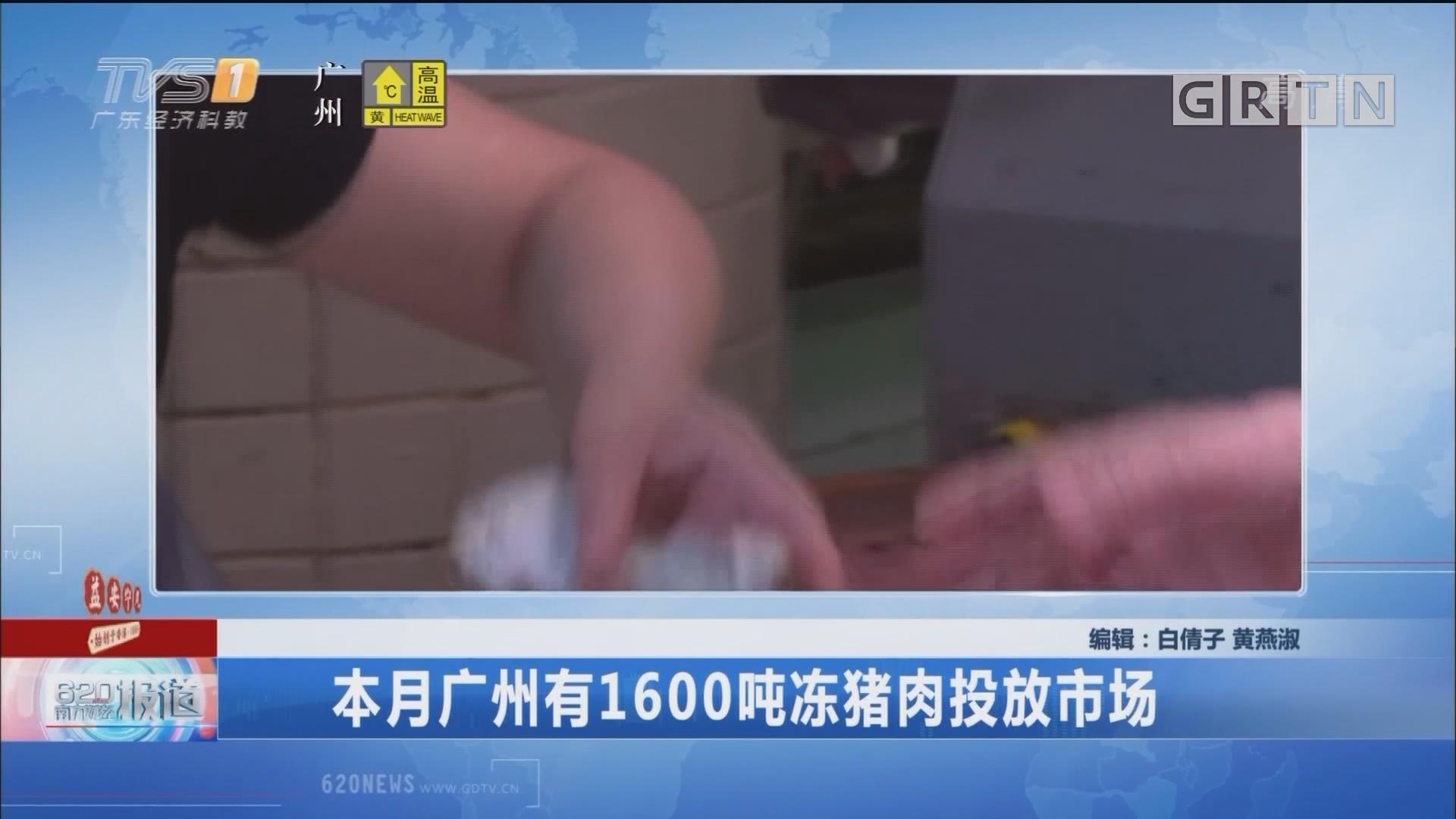 本月广州有1600吨冻猪肉投放市场