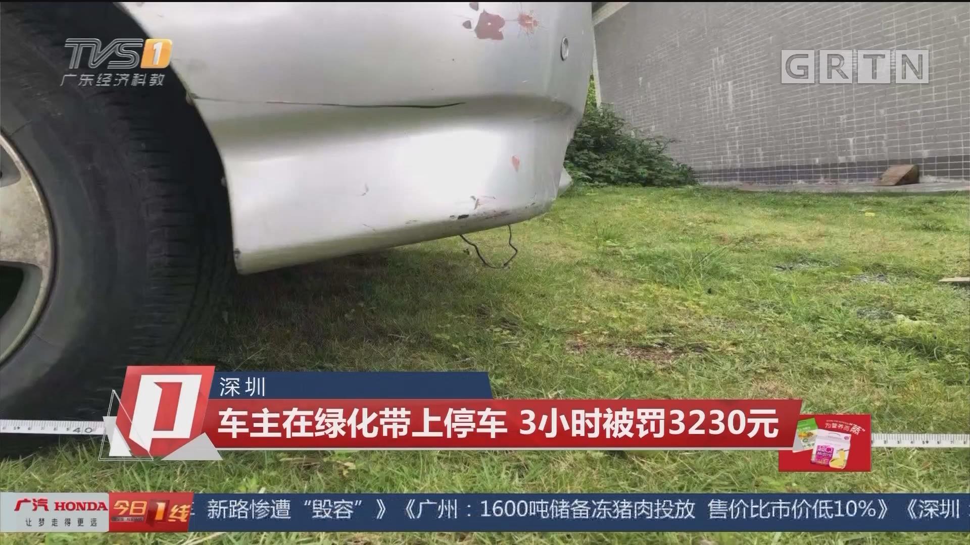 深圳 车主在绿化带上停车 3小时被罚3230元