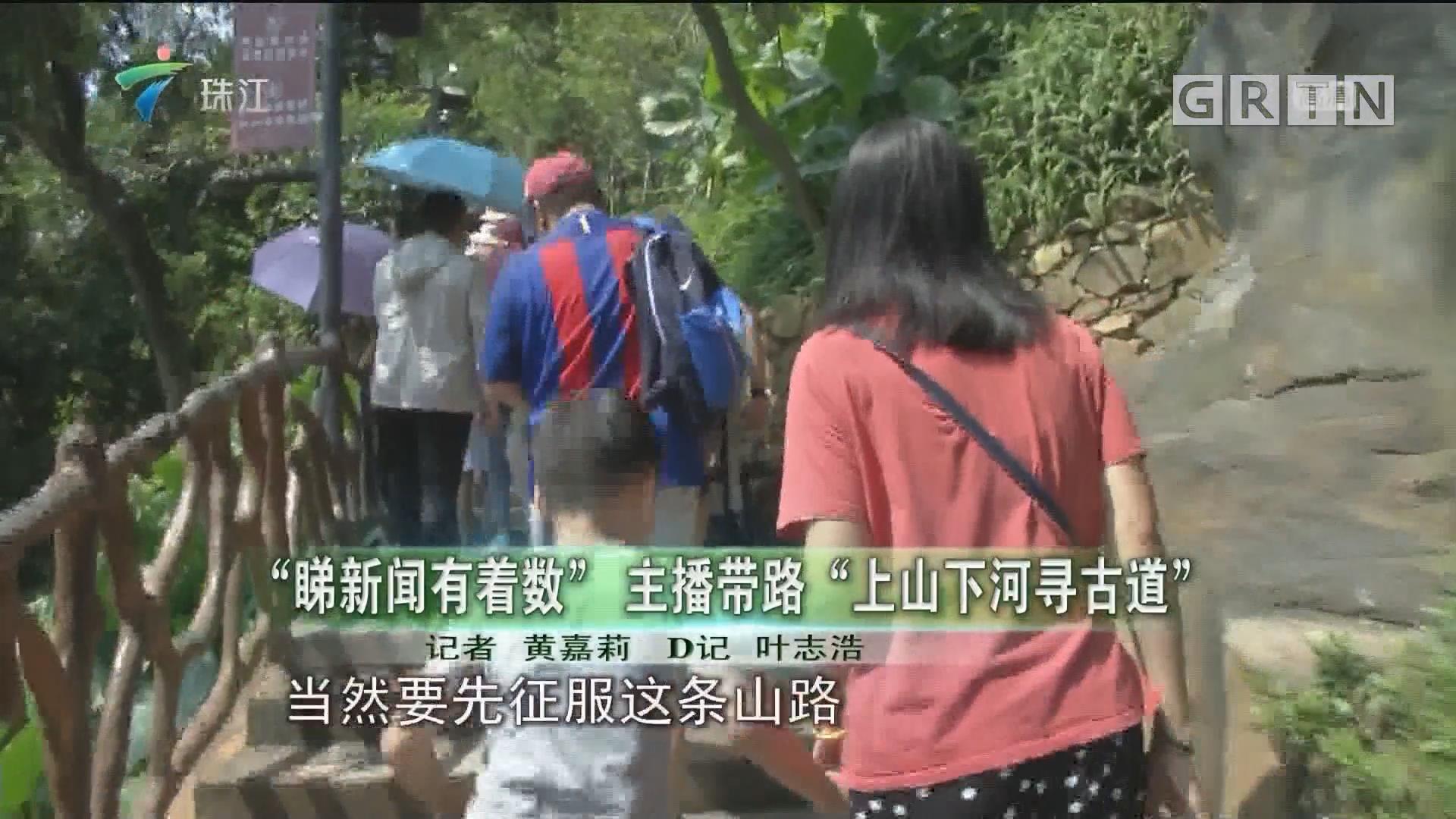 """""""睇新闻有着数"""" 主播带路""""上山下河寻古道"""""""