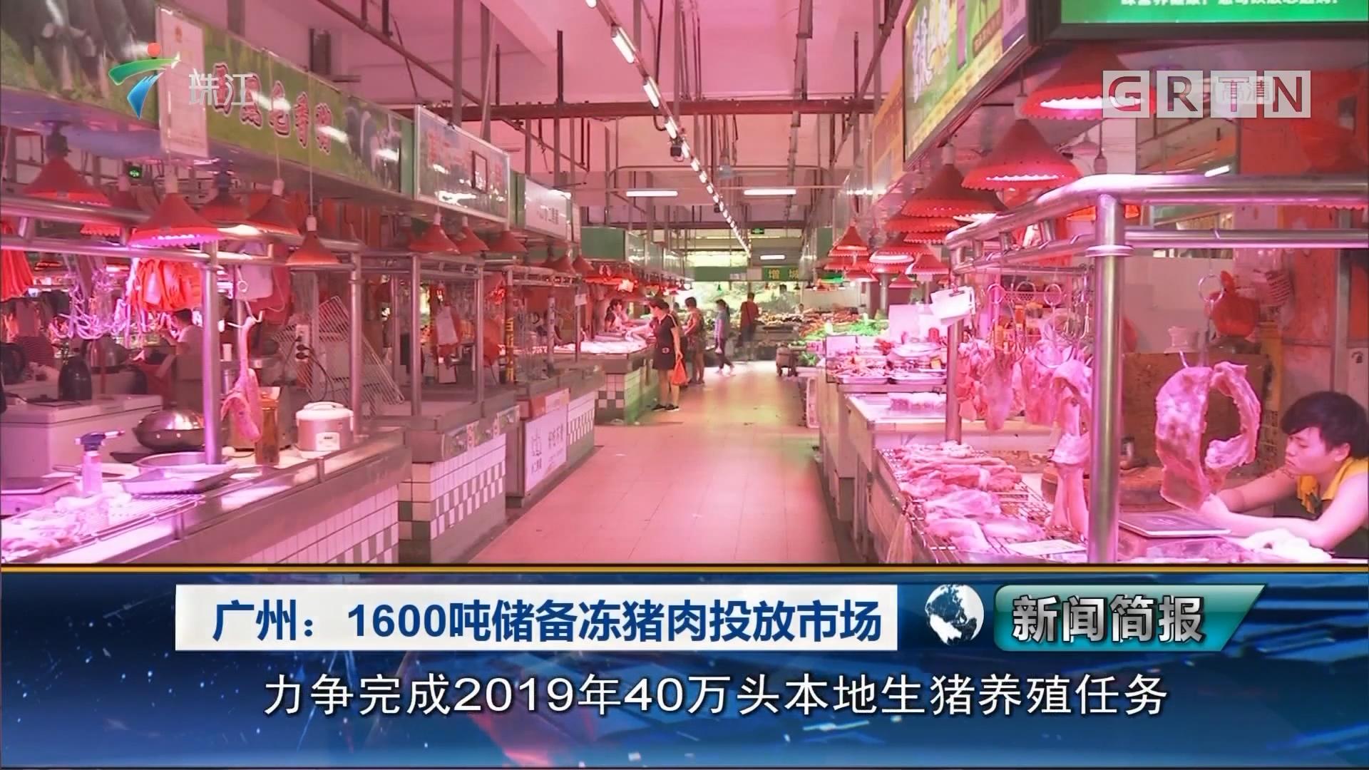 广州:1600吨储备冻猪肉投放市场