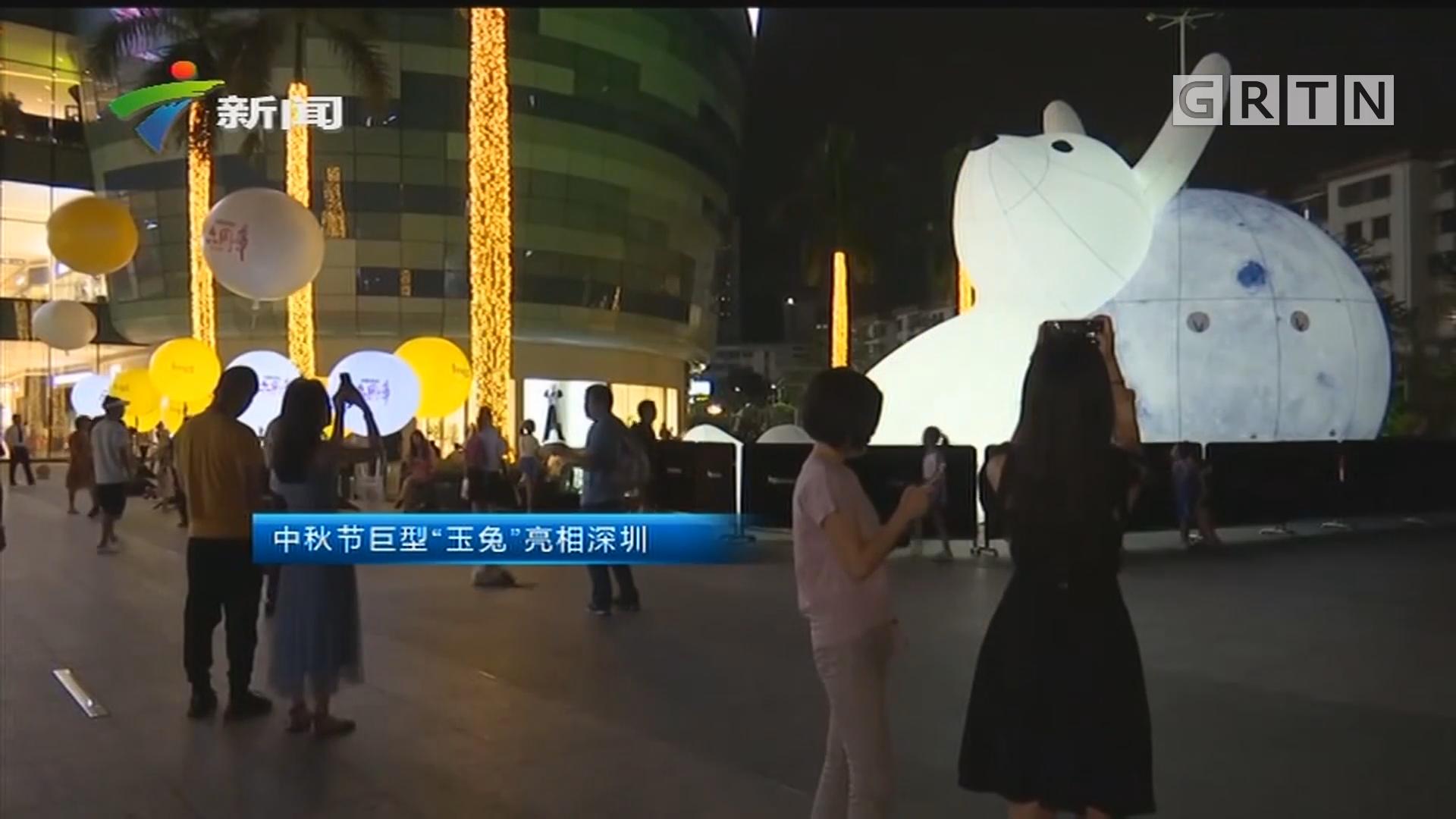 """中秋节巨型""""玉免""""亮相深圳"""