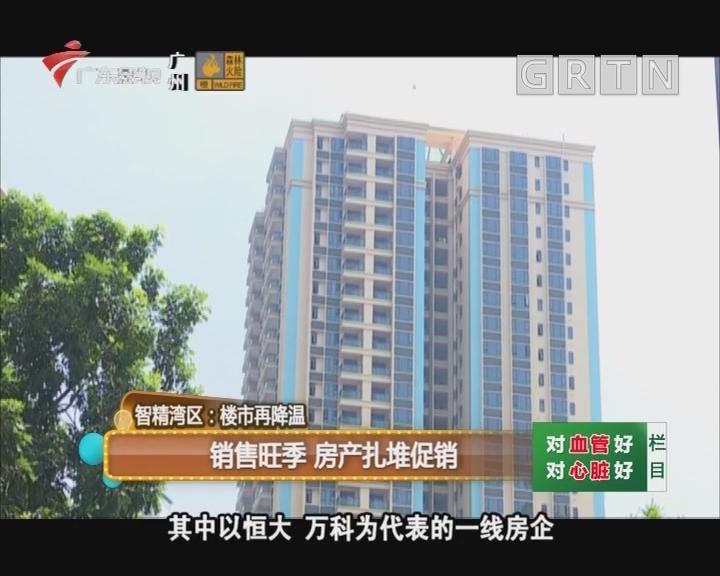 智精湾区:销售旺季 房产扎堆促销