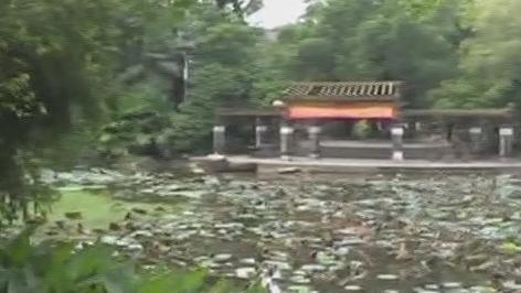 (DV现场)东莞:女子轻生跳河 铁骑队员暖心救援
