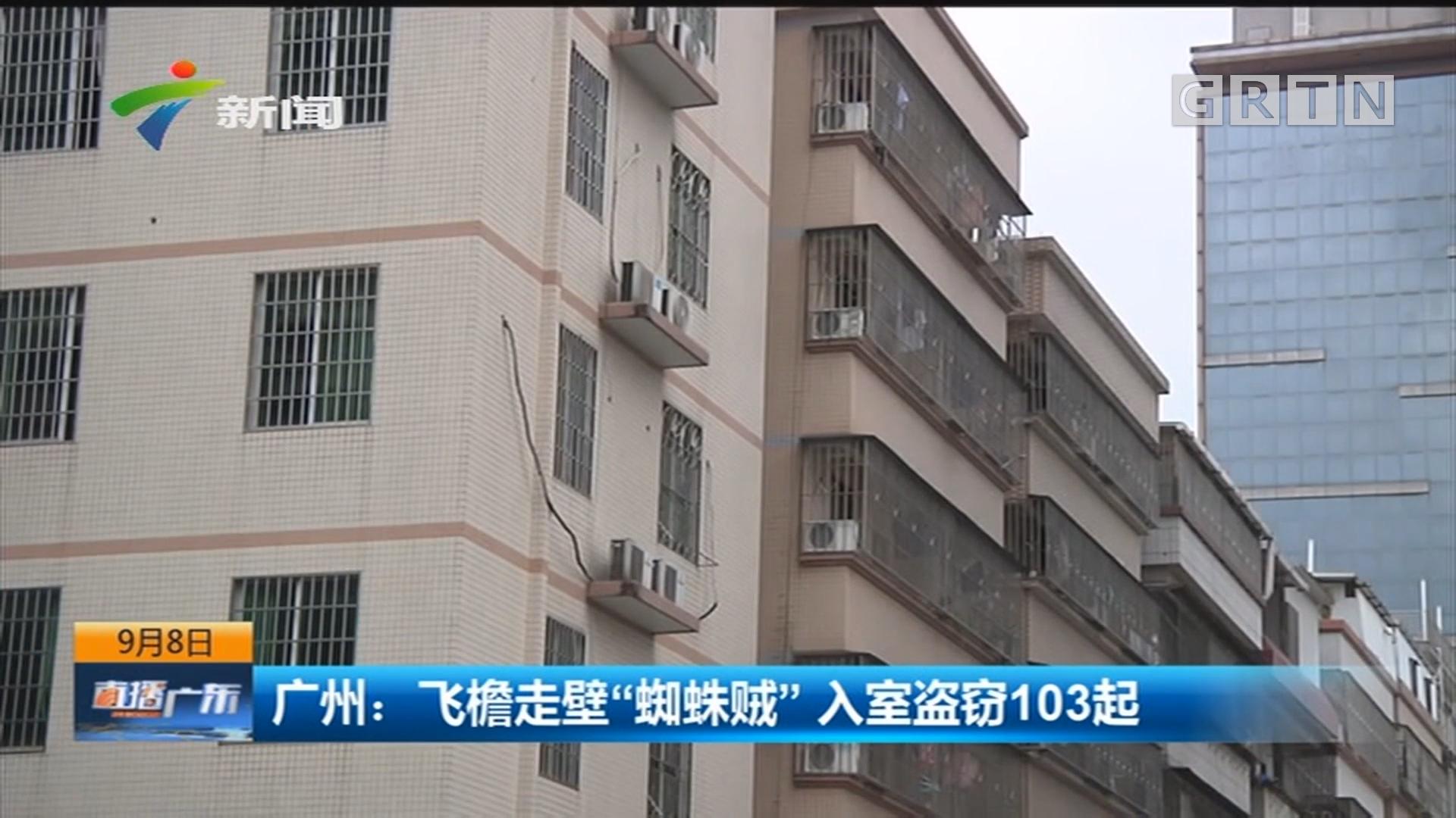 """广州:飞檐走壁""""蜘蛛贼""""入室盗窃103起"""