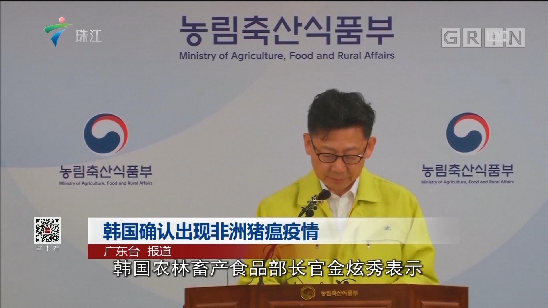 韩国确认出现非洲猪癌疫情