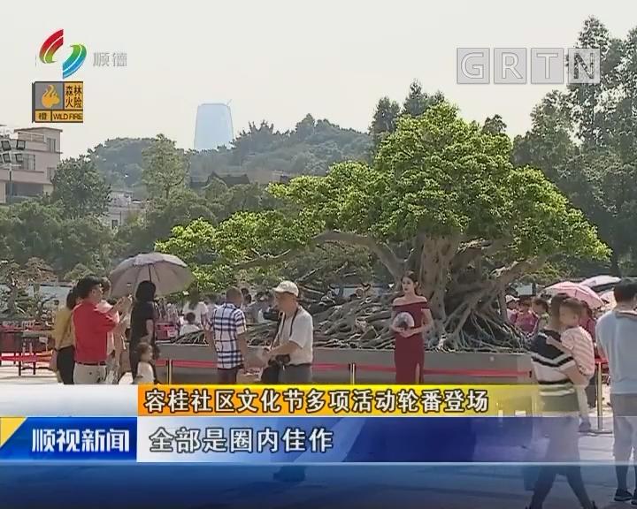 容桂社區文化節多項活動輪番登場