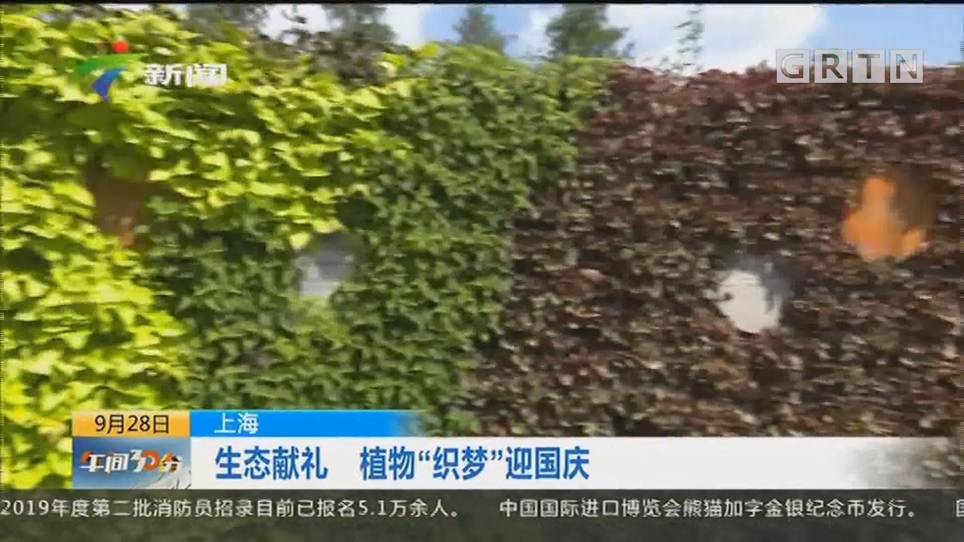 """上海:生态献礼 植物""""织梦""""迎国庆"""