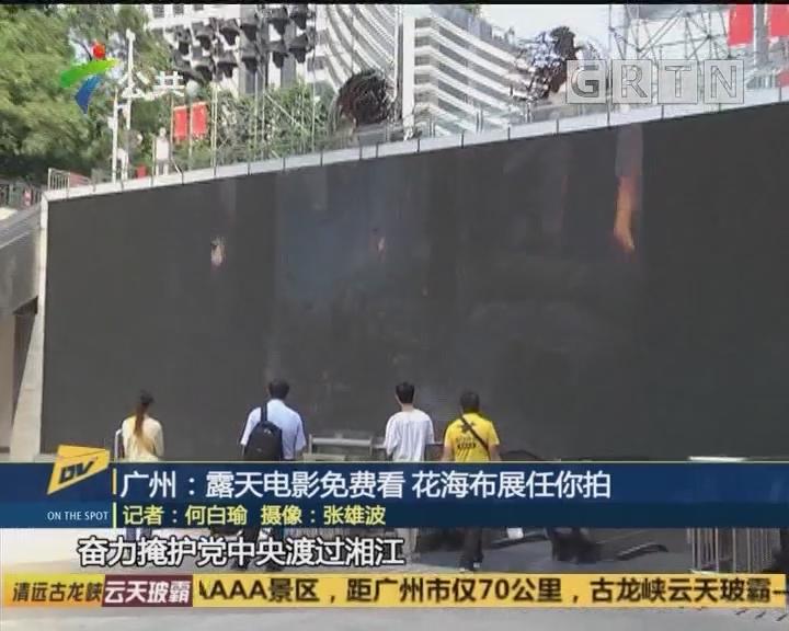 (DV现场)广州:露天电影免费看 花海布展任你拍