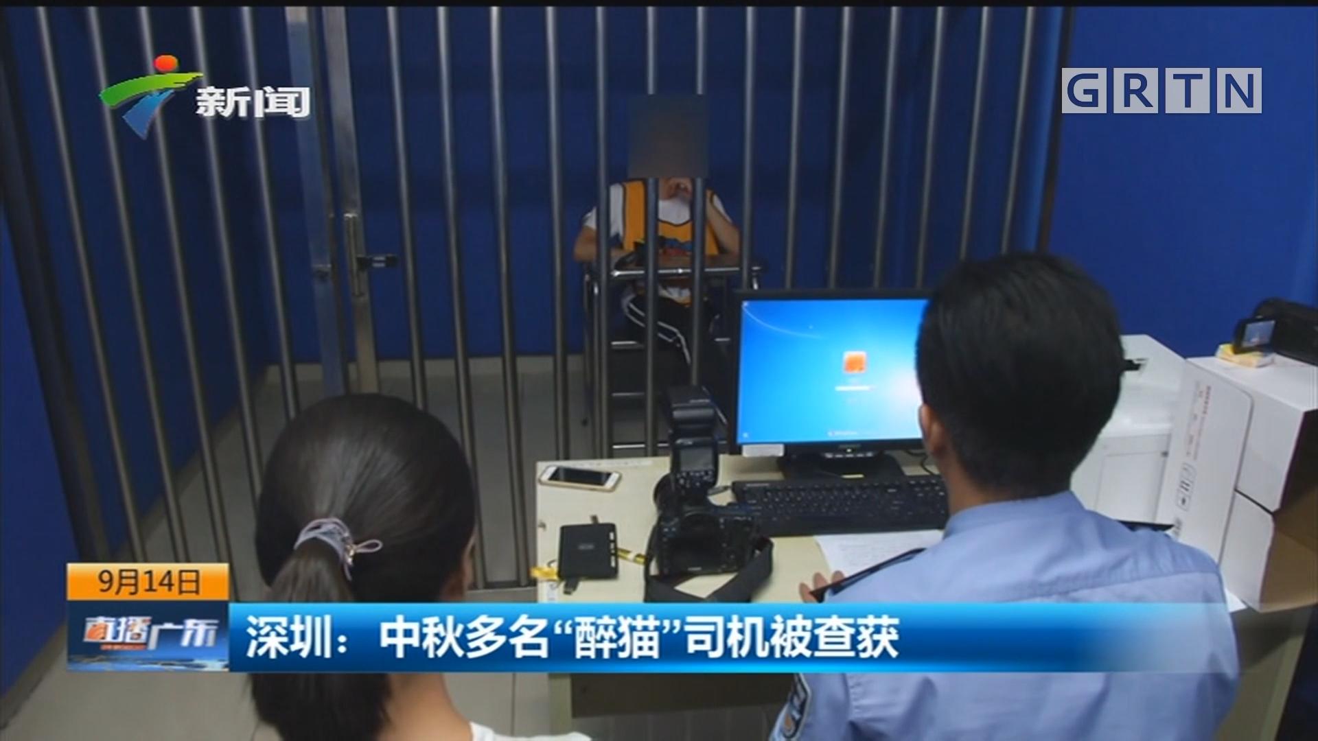 """深圳:中秋多名""""醉猫""""司机被查获"""
