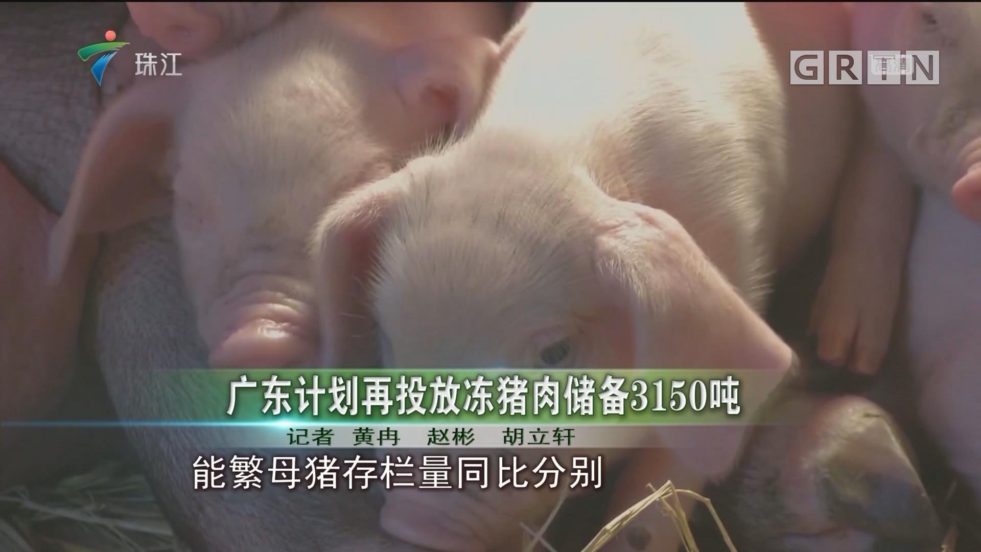 广东计划再投放冻猪肉储备3150吨