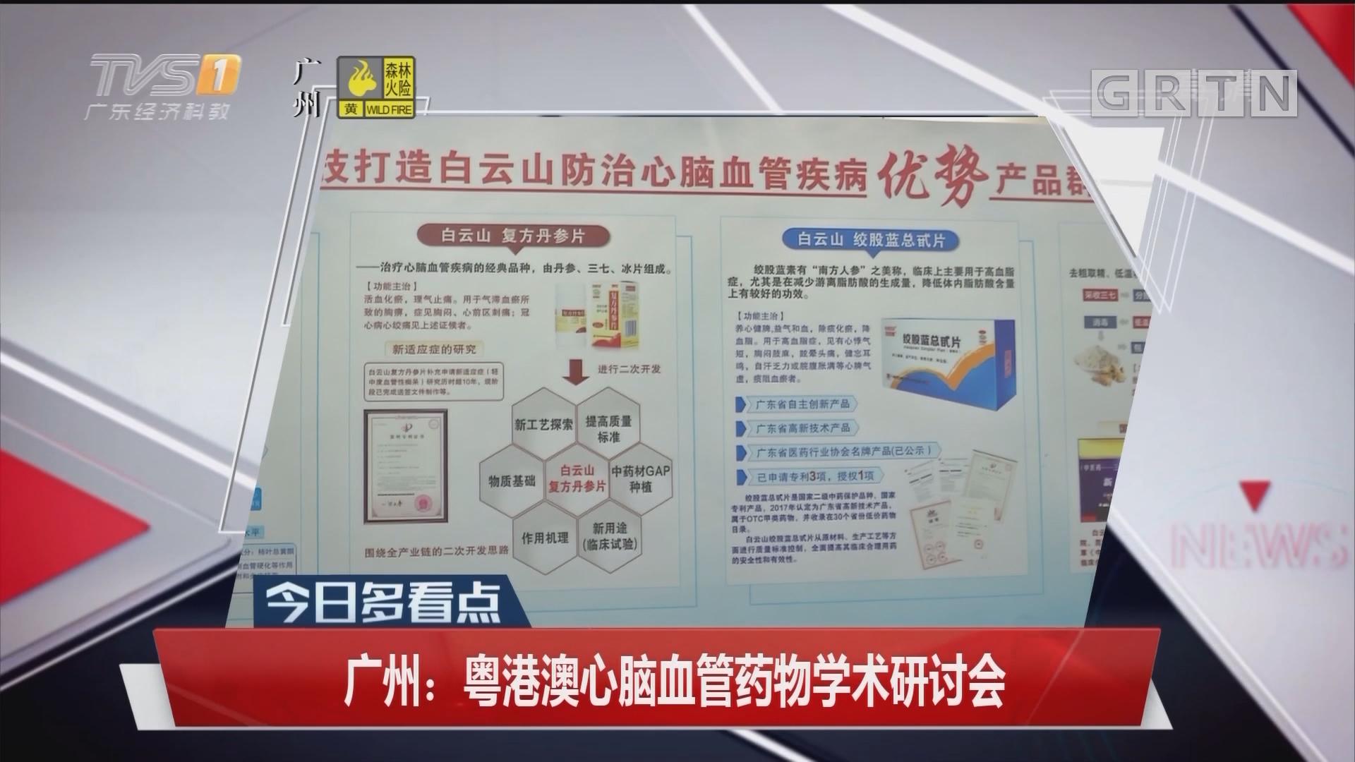 广州:粤港澳心脑血管药物学术研讨会