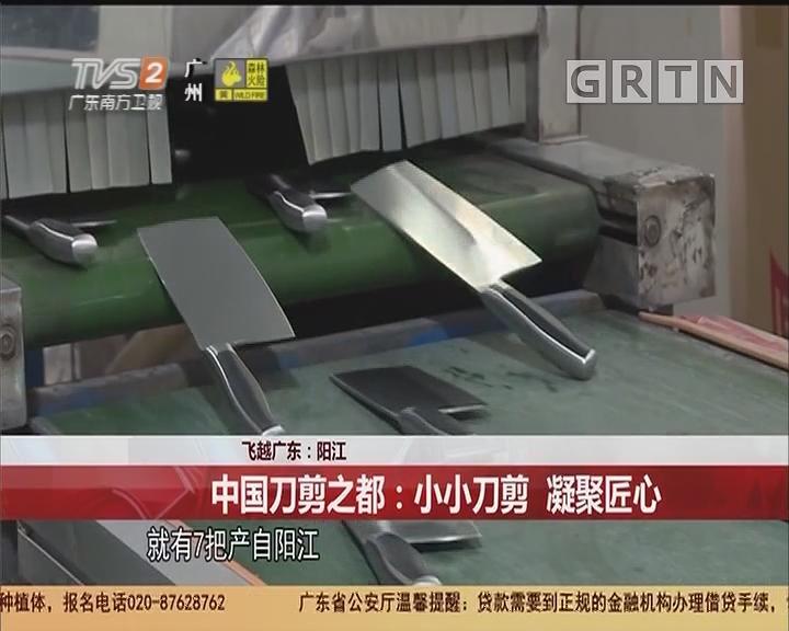 飞越广东:阳江 中国刀剪之都:小小刀剪 凝聚匠心