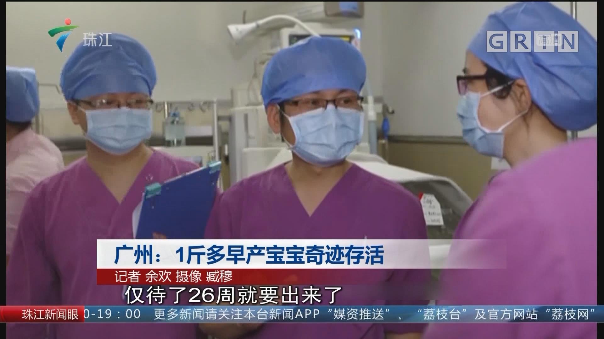 广州:1斤多早产宝宝奇迹存活