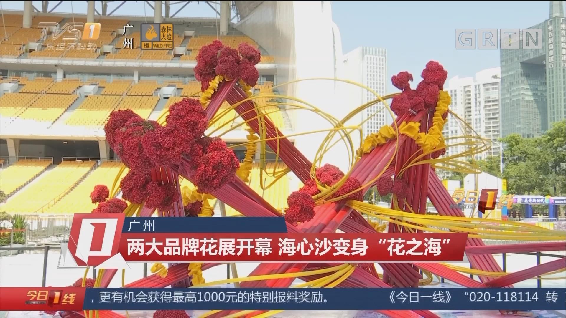 """广州:两大品牌花展开幕 海心沙变身""""花之海"""""""