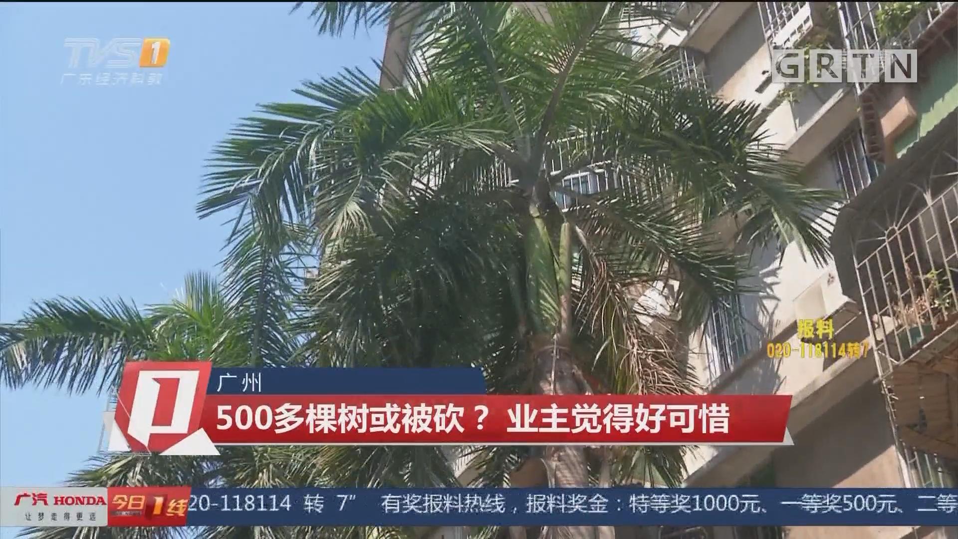 廣州:500多棵樹或被砍?業主覺得好可惜