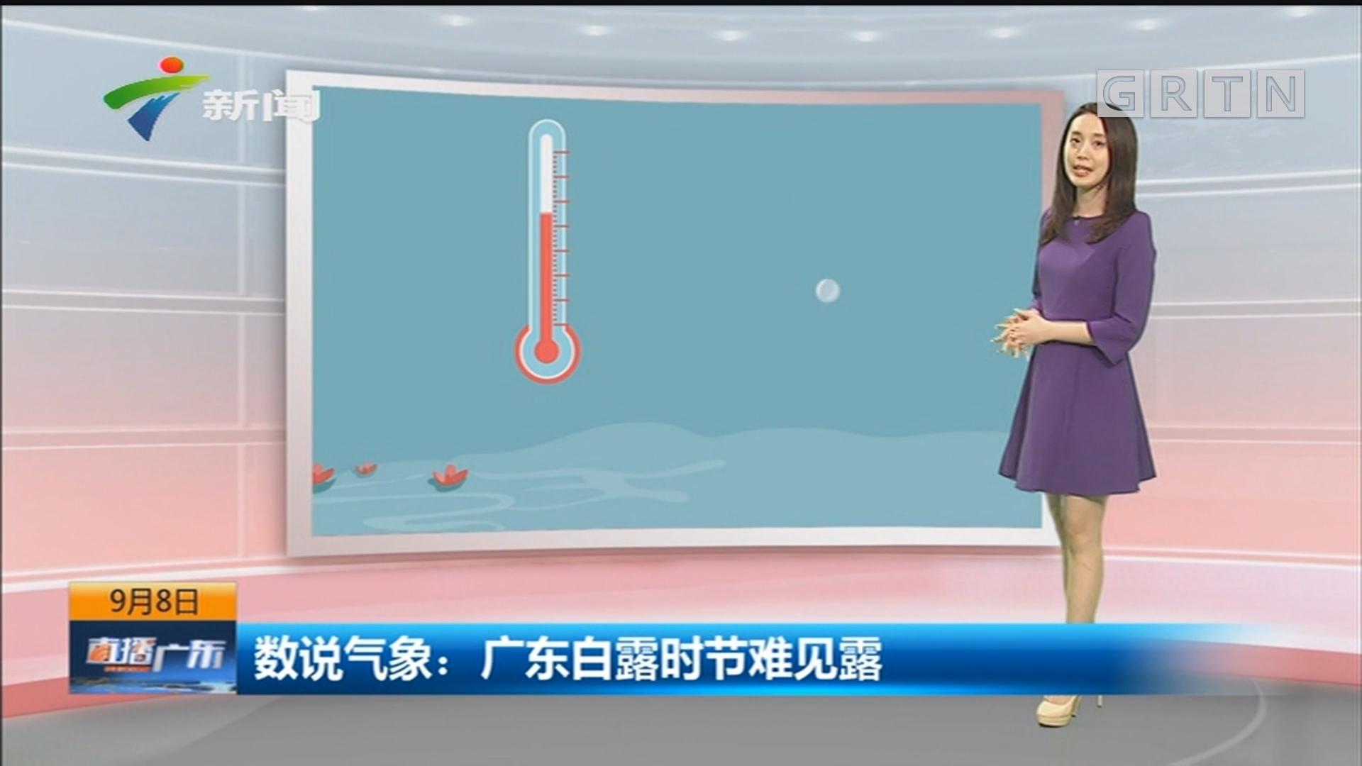 数说气象:广东白露时节难见露