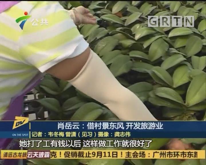 (DV现场)肖岳云:借村景东风 开发旅游业
