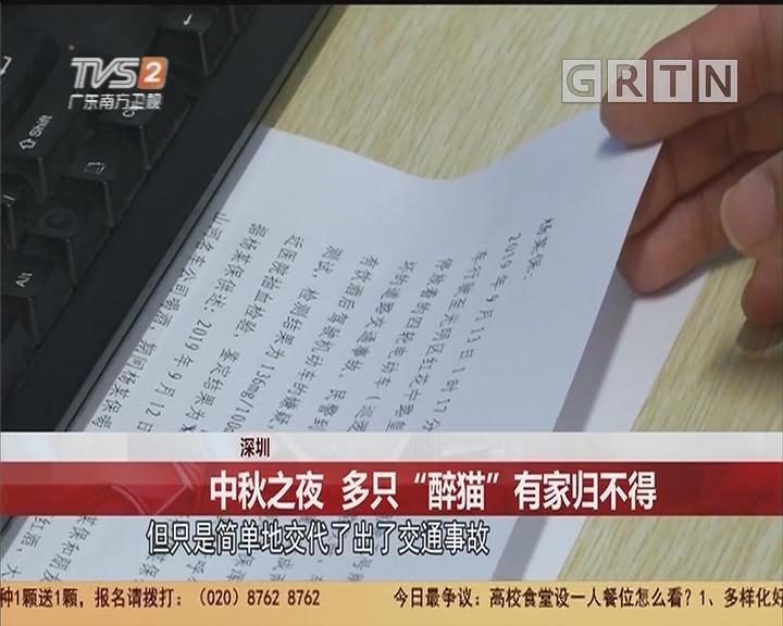 """深圳:中秋之夜 多只""""醉猫""""有家归不得"""
