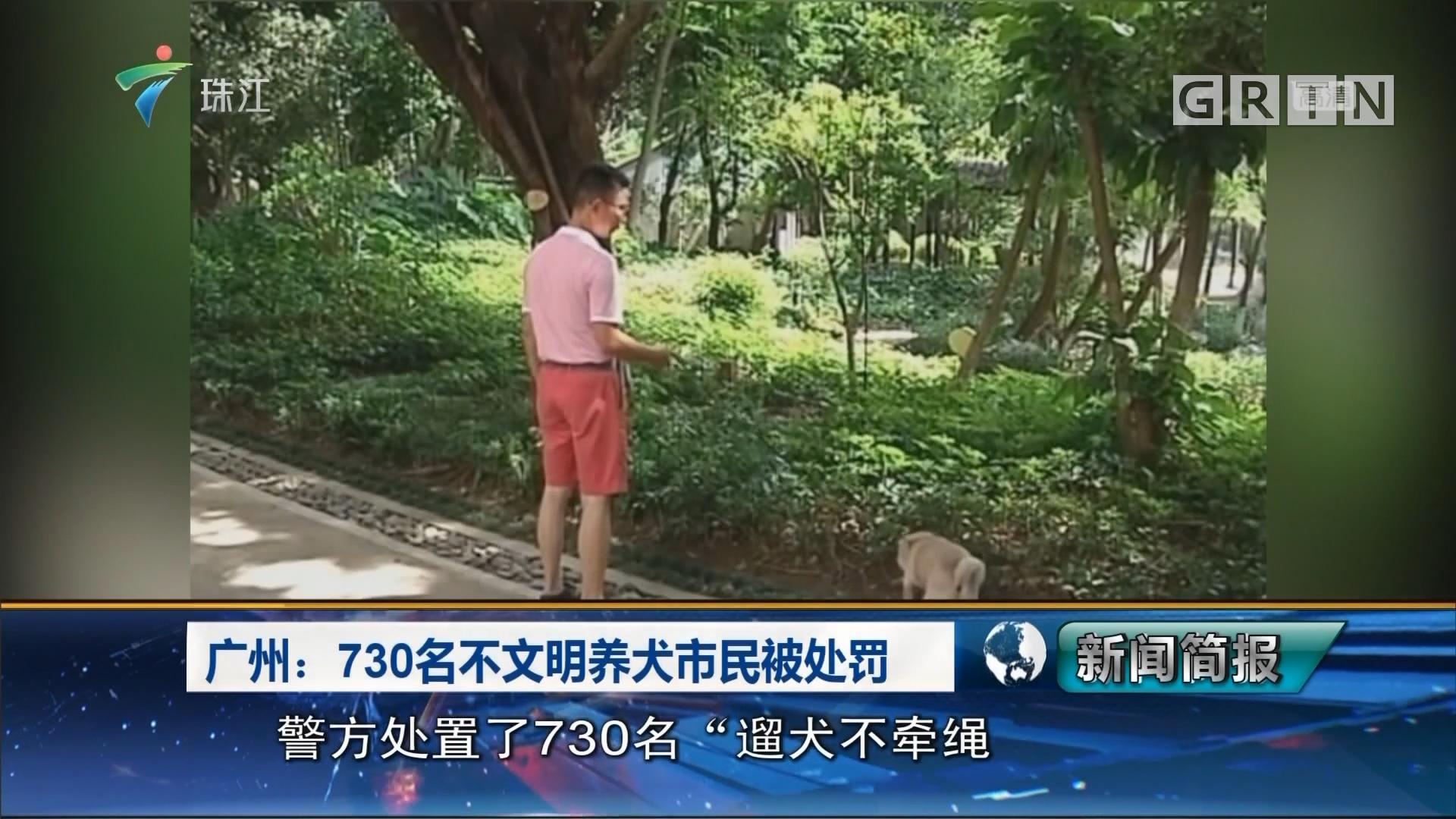广州:730名不文明养犬市民被处罚