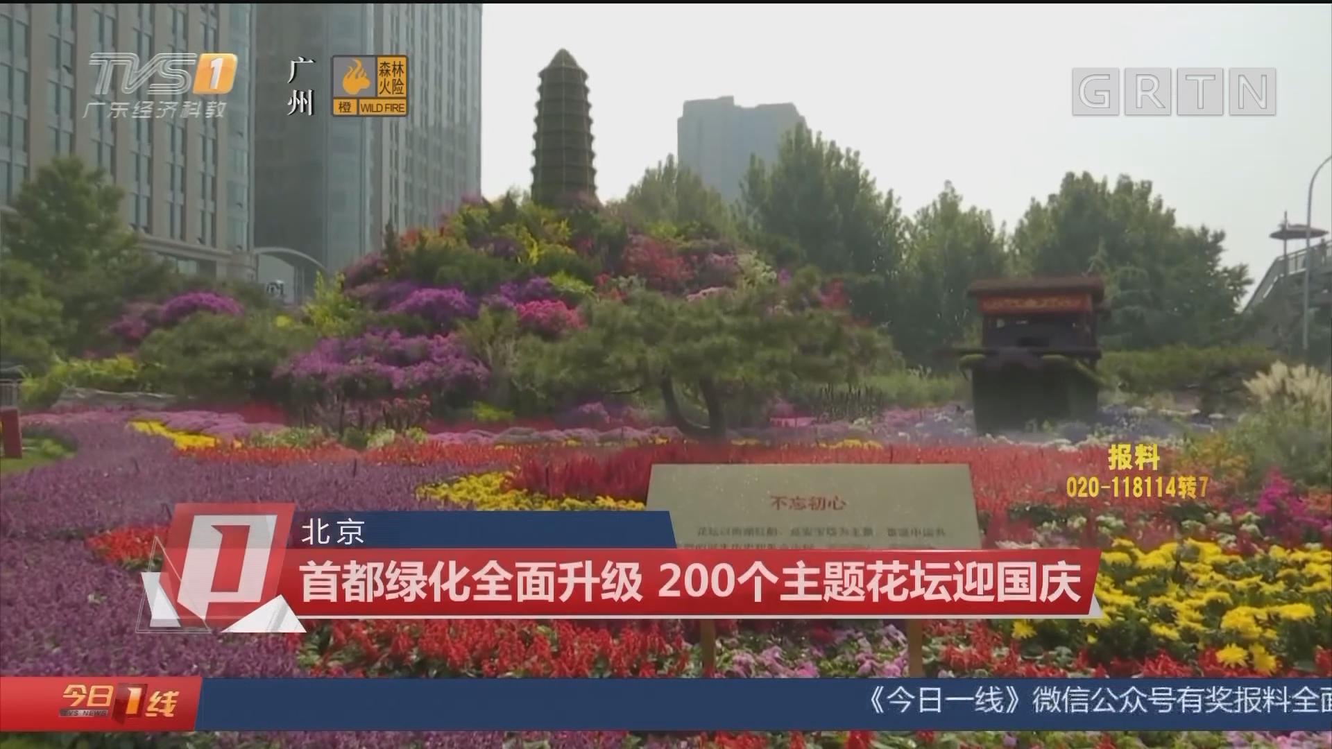 北京:首都绿化全面升级 200个主题花坛迎国庆