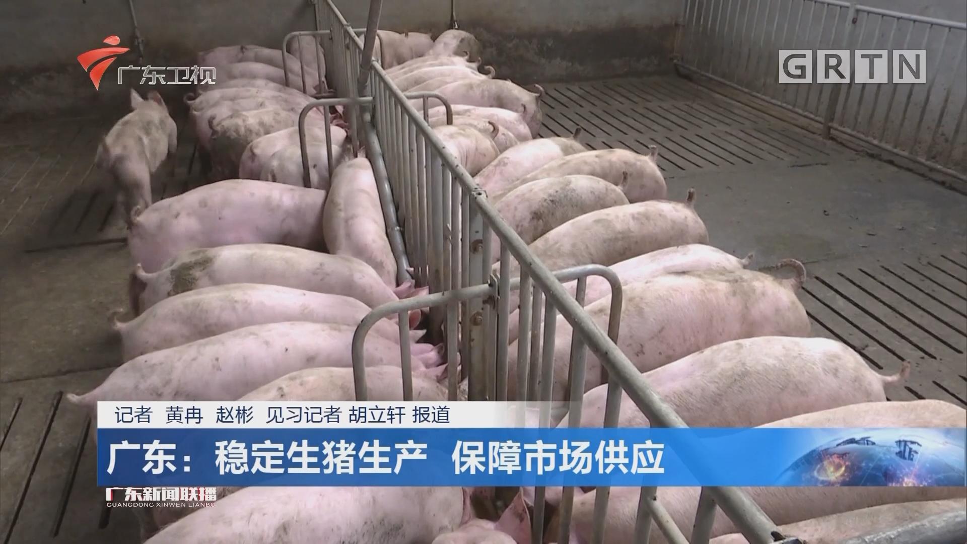 广东:稳定生猪生产 保障市场供应