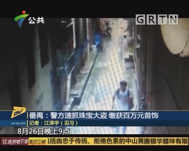 (DV现场)番禺:警方速抓珠宝大盗 缴获百万元首饰