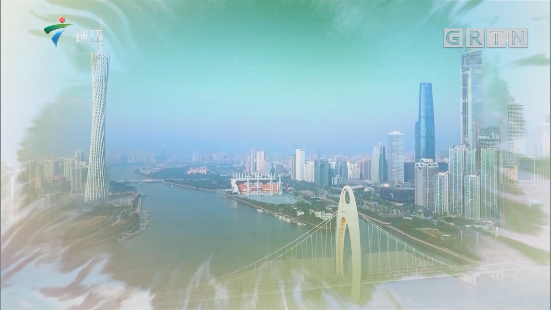 [HD][2019-09-21]广东视窗:深圳宝安区:万米紫色花带 喜迎八方宾客