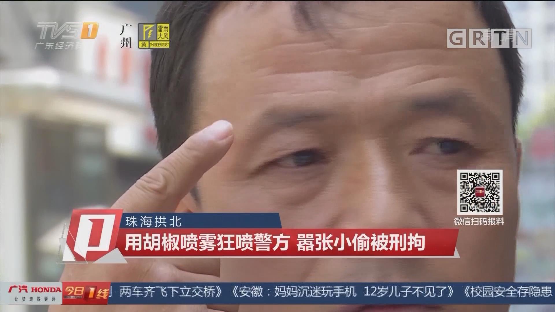 珠海拱北:用胡椒喷雾狂喷警方 嚣张小偷被刑拘